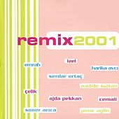 Remix 2001 by Various Artists