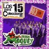 Los 15 Para Coleccionar de Banda Maguey