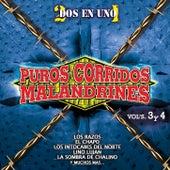 Puros Corridos Malandrines, Vol. 3 & 4 de Various Artists