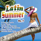 Latin Summer Vol. 1 by Various Artists