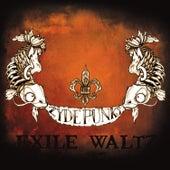 Exile Waltz by The Zydepunks
