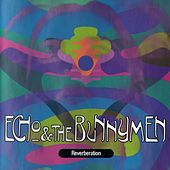 Reverberation by Echo and the Bunnymen
