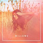 Willows by The Willows