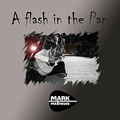 A Flash in the Pan by Mark Mathews