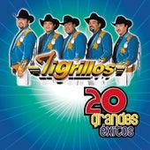 20 Grandes Exitos by Los Tigrillos