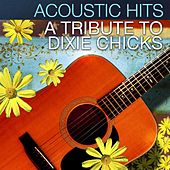 Acoustic Hits - A Tribute to the Dixie Chicks de Acoustic Hits