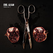 FABRICLIVE 77: Erol Alkan by Various Artists