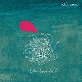 Wer bist du? by Alin Coen Band