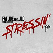 Stressin von Fat Joe