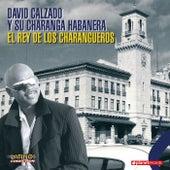 El Rey De Los Charangueros by Charanga Habanera