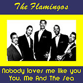 Nobody Loves Me by The Flamingos