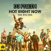 Hot Right Now by DJ Fresh