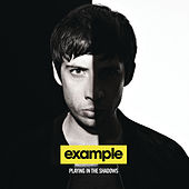 Playing In The Shadows de Example