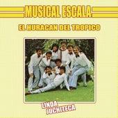 El Huracán del Trópico - Linda Juchiteca de Musical Escala