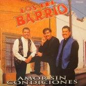 Amor Sin Condiciones by Los Del Barrio