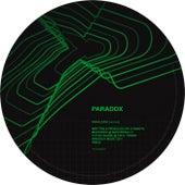 Paralexia (Version) / Ambiguity (Version) by Paradox