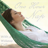 One Hour Long Nap with a Wake up Call: An Hour of Relaxing Music and Nature Sounds and One U.S. Army Cadence for a High Energy Wake up Call by Various Artists
