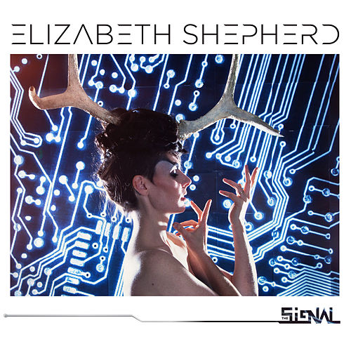 The Signal by Elizabeth Shepherd