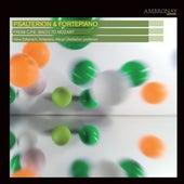 Psalterion & Fortepiano von Various Artists