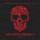 Amazone Project Vol. 3 van Various Artists