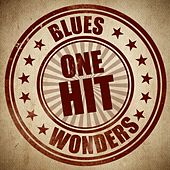 Blues One Hit Wonders van Various Artists