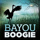 Bayou Boogie de Various Artists
