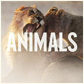 Animals de Maroon 5