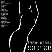 Best of Zensur Records 2013 de Various Artists