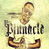 The Pinnacle by Various Artists