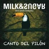Canto Del Pilon by Milk & Sugar