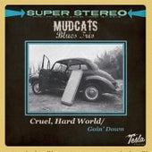 Cruel, Hard World by Mudcats Blues Trio