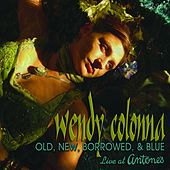 Old New Borrowed & Blue by Wendy Colonna