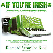 If You're Irish by Diamond Accordion Band