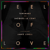 Feel Of Love de Tensnake