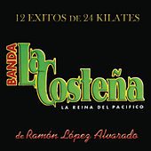 12 Exitos De 24 Kilates by Banda La Costena