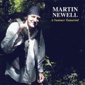 A Summer Tamarind by Martin Newell