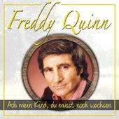Ach Mein Kind, Du Musst Noch Wachsen by Freddy Quinn