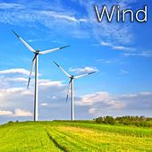 Wind Blowing by Tmsoft's White Noise Sleep Sounds