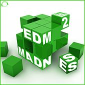 EDM Madness, Vol. 2 by Various Artists