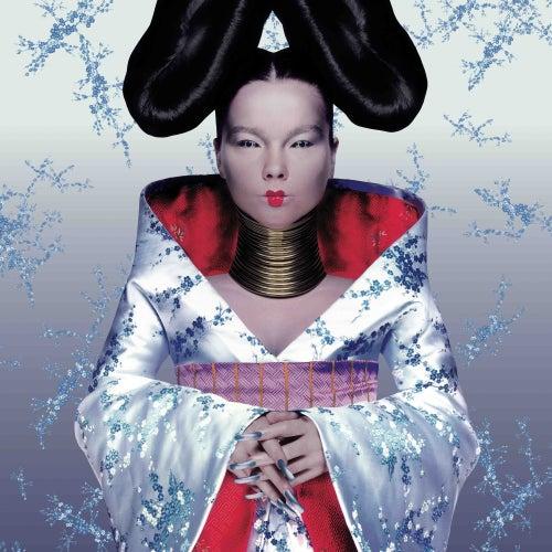 Homogenic by Björk