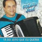 Tá do Jeito Que Eu Queria von Flavio José