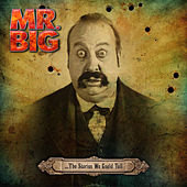 ...The Stories We Could Tell by Mr. Big