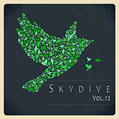 Skydive, Vol. 12 by Various Artists