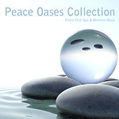 Peace Oases Collection (Finest Chill Spa & Wellness Music) by Various Artists