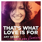 That's What Love Is For de Amy Grant