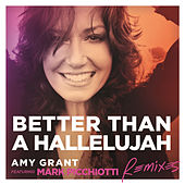 Better Than A Hallelujah by Amy Grant