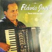 Turnê 2013 Ao Vivo de Flavio José