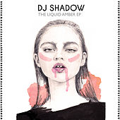 The Liquid Amber EP by DJ Shadow