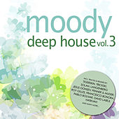 Moody Deep House, Vol. 3 by Various Artists