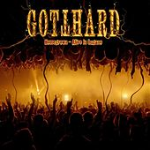 Homegrown - Alive In Lugano von Gotthard